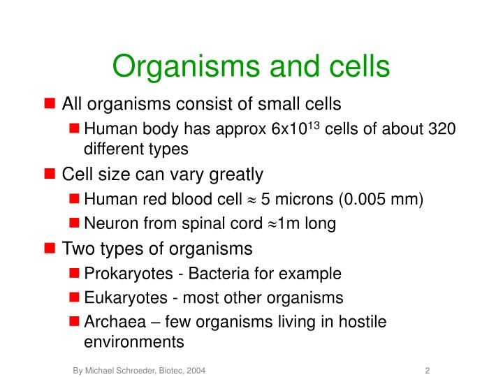 Organisms and cells