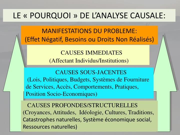 LE « POURQUOI » DE L'ANALYSE CAUSALE:
