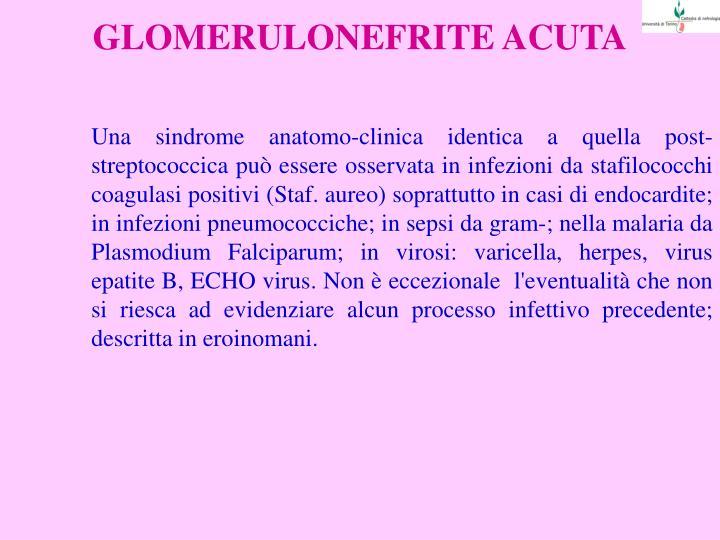 GLOMERULONEFRITE ACUTA
