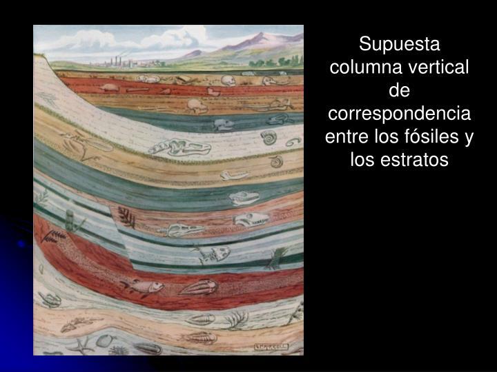 Supuesta columna vertical de correspondencia entre los fósiles y los estratos