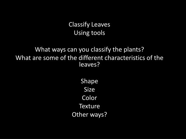 Classify Leaves