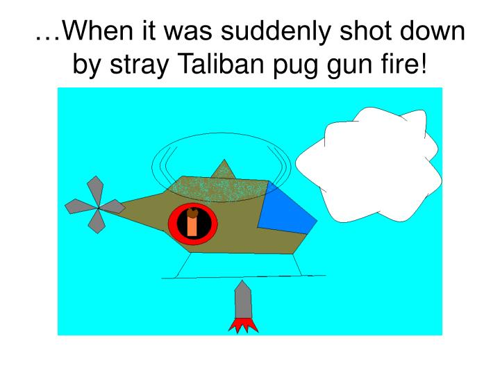 …When it was suddenly shot down by stray Taliban pug gun fire!