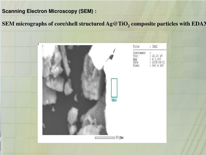 Scanning Electron Microscopy (SEM) :