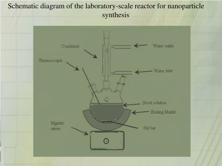 Schematic diagram of the laboratory-scale reactor for nanoparticle