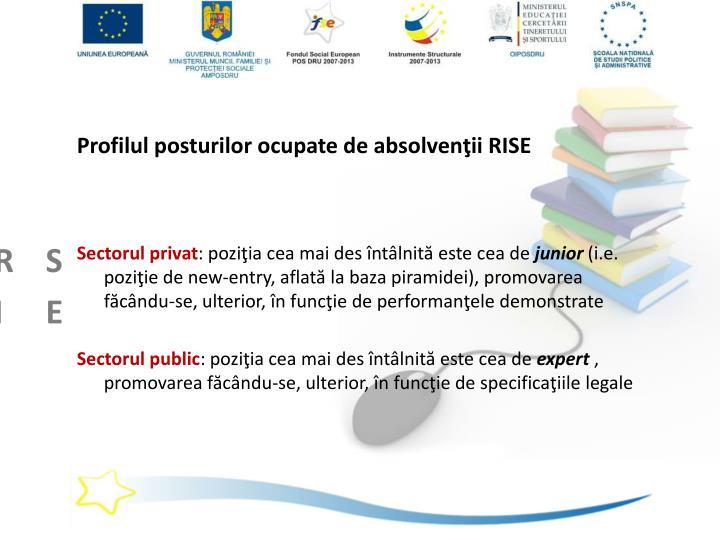 Profilul posturilor ocupate de absolvenţii RISE