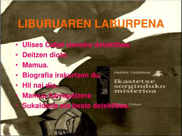LIBURUAREN LABURPENA