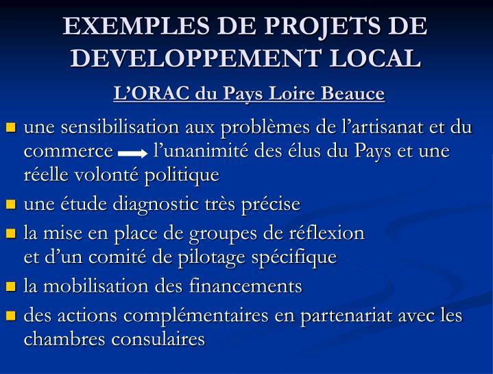 EXEMPLES DE PROJETS DE DEVELOPPEMENT LOCAL