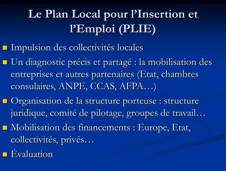 Le Plan Local pour l'Insertion et l'Emploi (PLIE)
