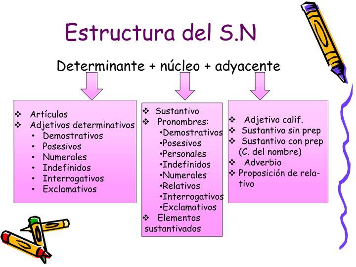 Estructura del S.N