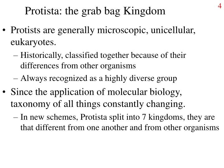 Protista: the grab bag Kingdom