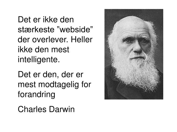 """Det er ikke den stærkeste """"webside"""" der overlever. Heller ikke den mest intelligente."""