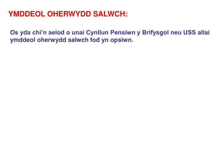 YMDDEOL OHERWYDD SALWCH: