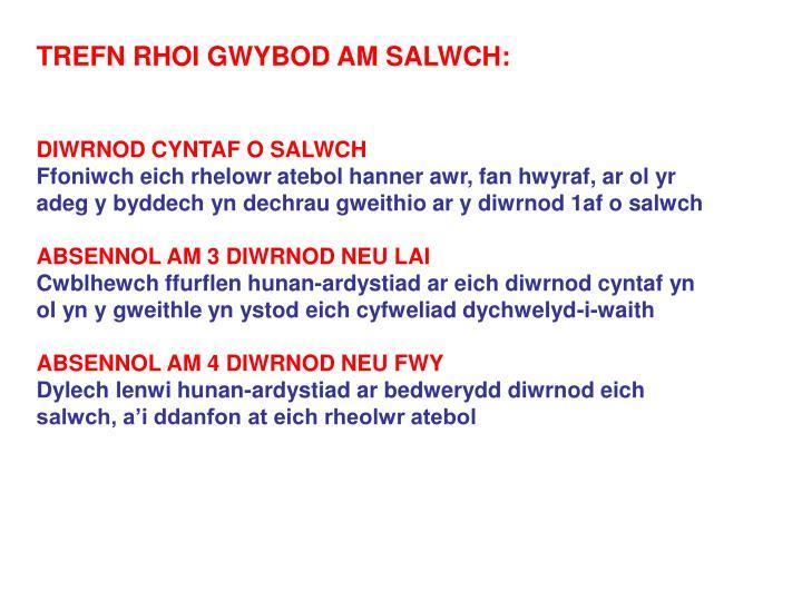 TREFN RHOI GWYBOD AM SALWCH: