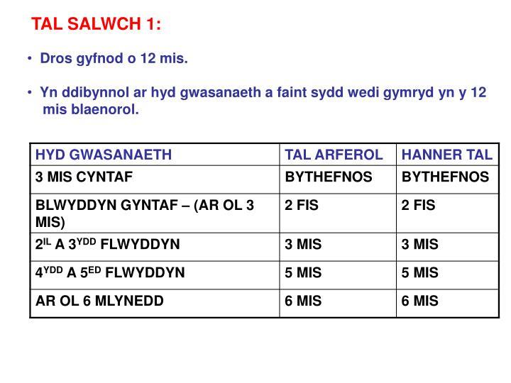 TAL SALWCH 1: