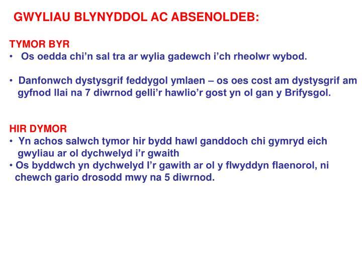 GWYLIAU BLYNYDDOL AC ABSENOLDEB: