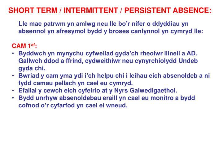 SHORT TERM / INTERMITTENT / PERSISTENT ABSENCE:
