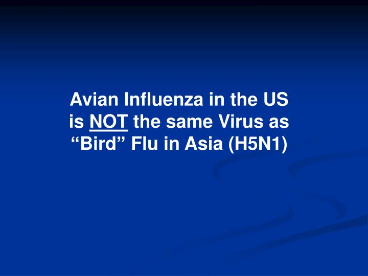 Avian Influenza in the US