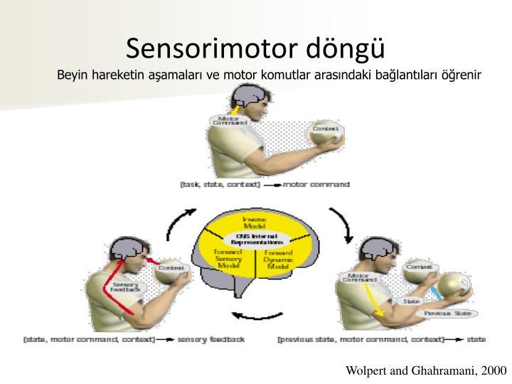Sensorimotor döngü