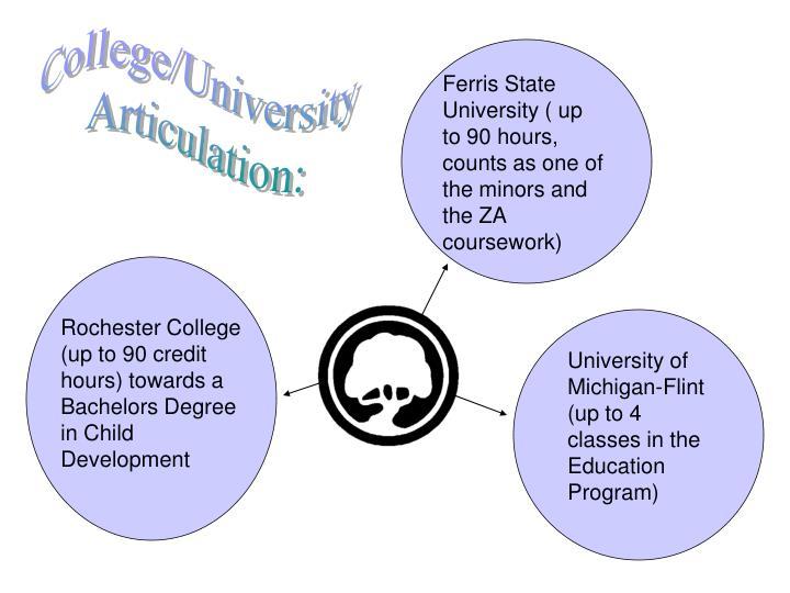 College/University
