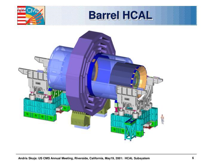 Barrel HCAL