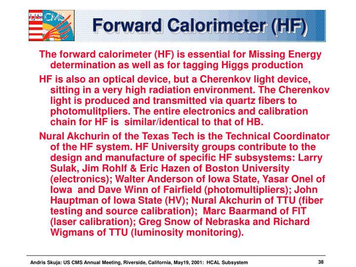 Forward Calorimeter (HF)
