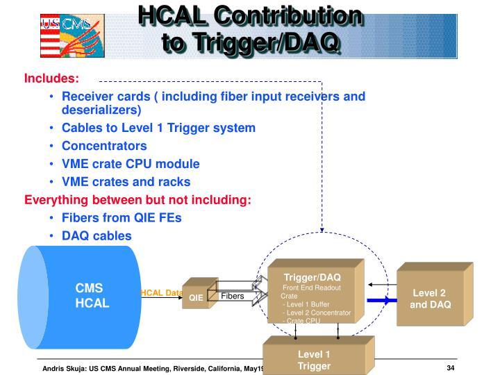 HCAL Contribution