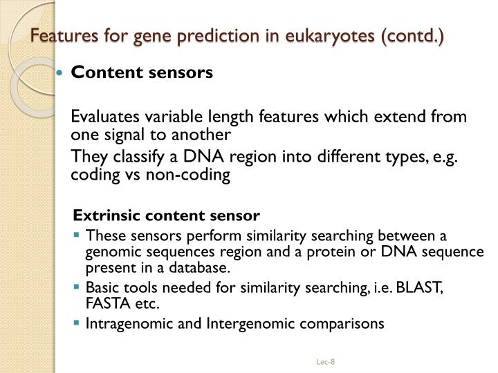 Features for gene prediction in