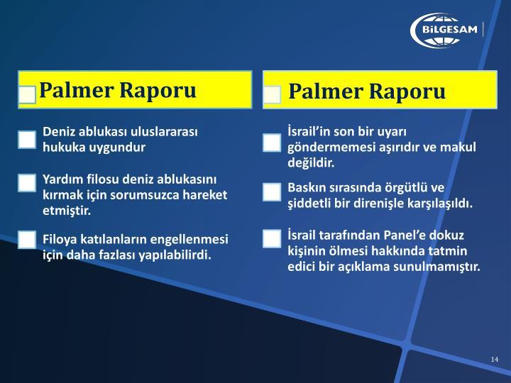 Palmer Raporu