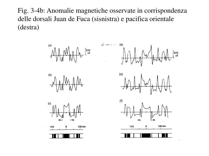 Fig. 3-4b: Anomalie magnetiche osservate in corrispondenza delle dorsali Juan de Fuca (sisnistra) e pacifica orientale (destra)