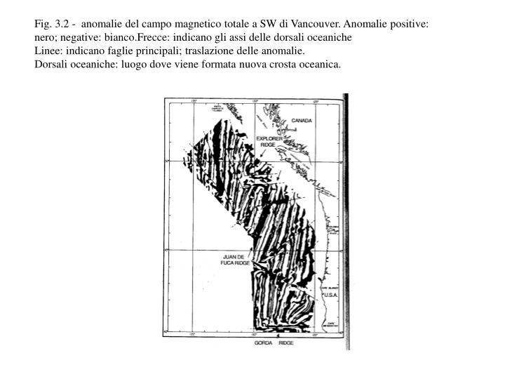 Fig. 3.2 -  anomalie del campo magnetico totale a SW di Vancouver. Anomalie positive: nero; negative: bianco.Frecce: indicano gli assi delle dorsali oceaniche