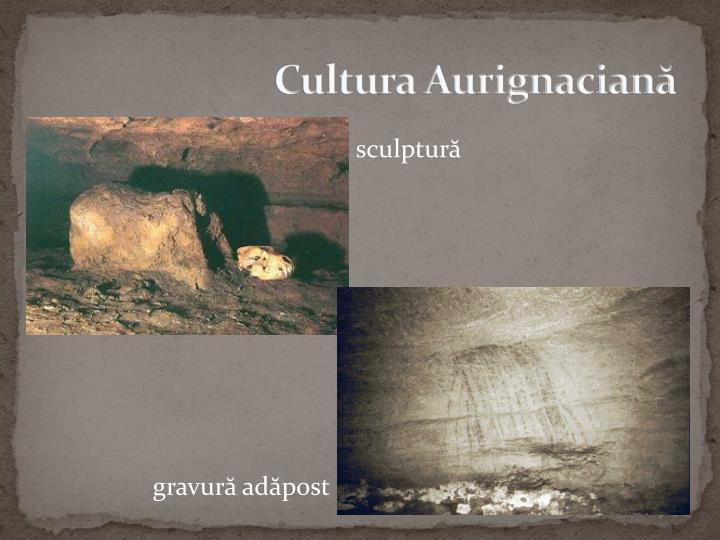 Cultura Aurignaciană