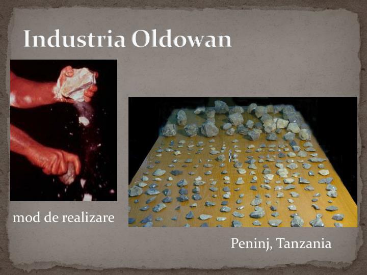 Industria Oldowan
