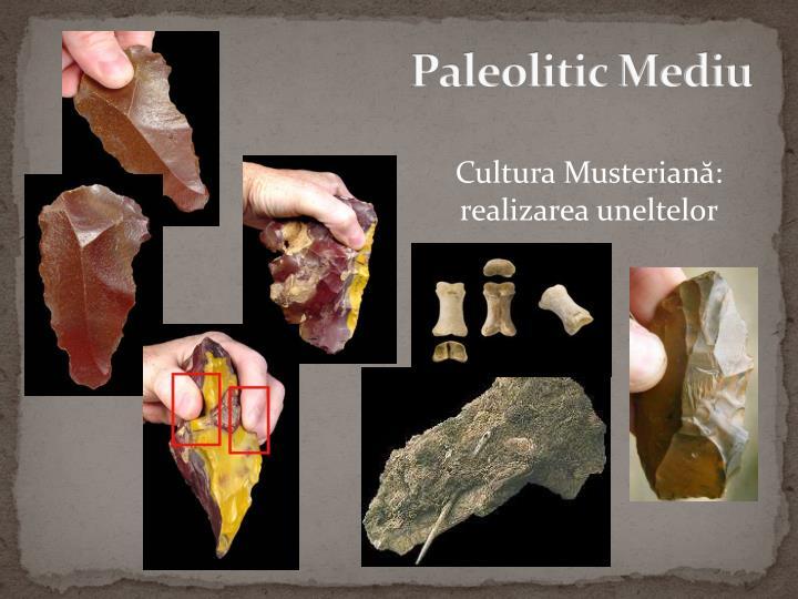 Paleolitic Mediu