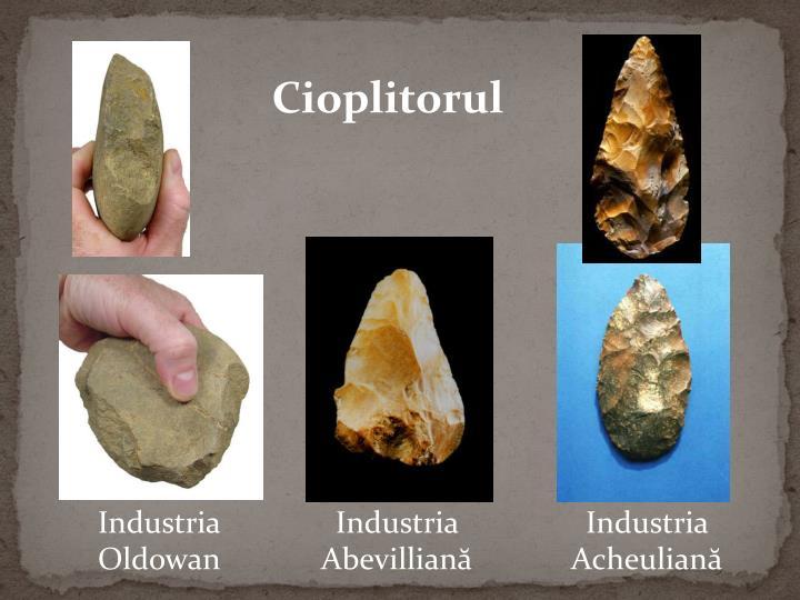 Cioplitorul