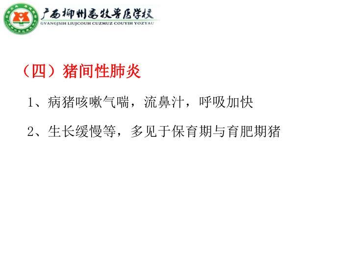 (四)猪间性肺炎