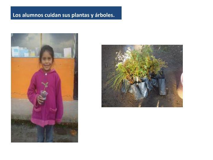 Los alumnos cuidan sus plantas y árboles.