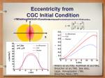 eccentricity from cgc initial condition