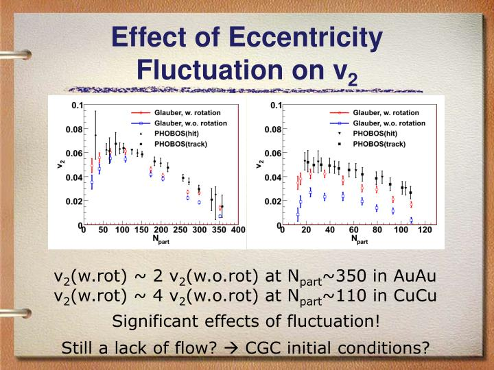 Effect of Eccentricity Fluctuation on v