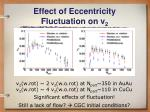effect of eccentricity fluctuation on v 2