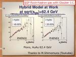 hybrid model at work at sqrt s nn 62 4 gev