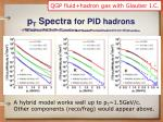 p t spectra for pid hadrons