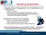 meddling stakeholder