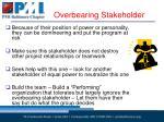 overbearing stakeholder