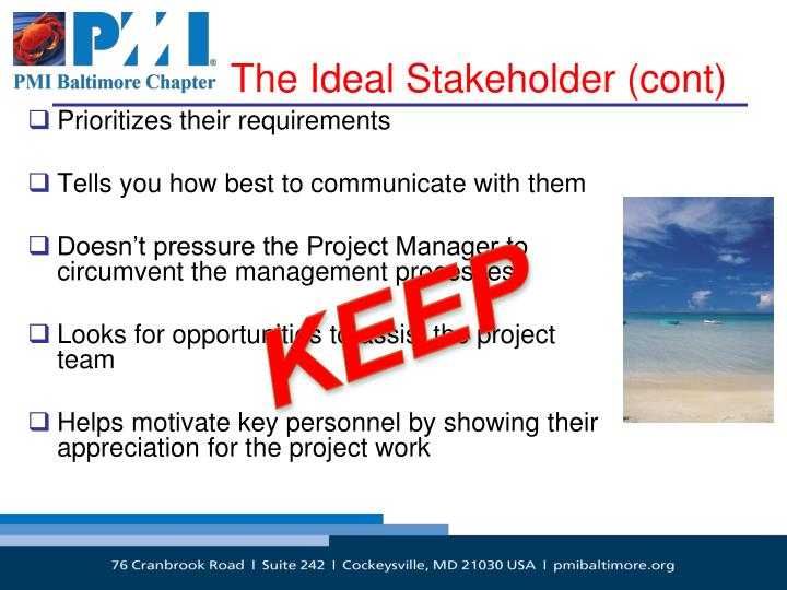 The Ideal Stakeholder (cont)