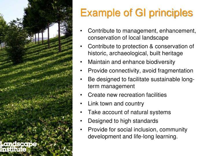 Example of GI principles
