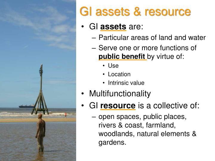 GI assets & resource