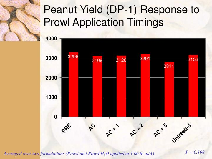 Peanut Yield (DP-1) Response to  Prowl Application Timings