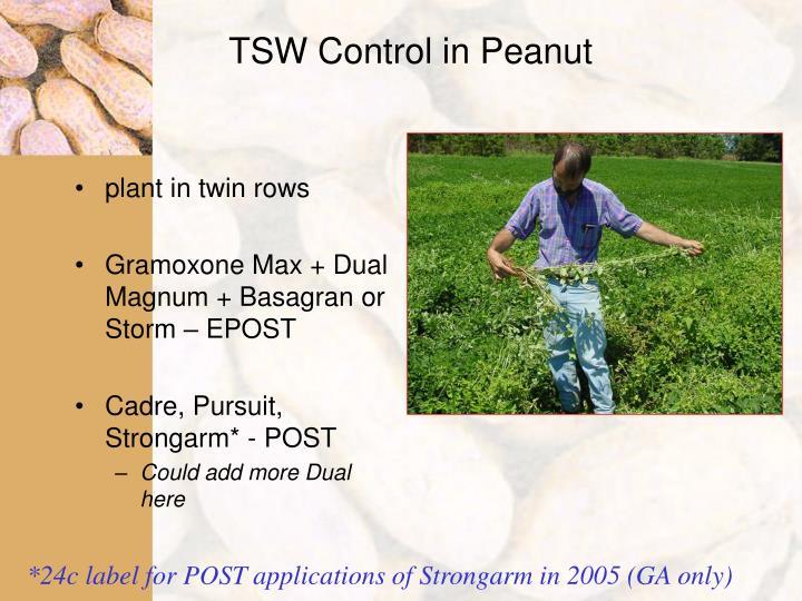 TSW Control in Peanut