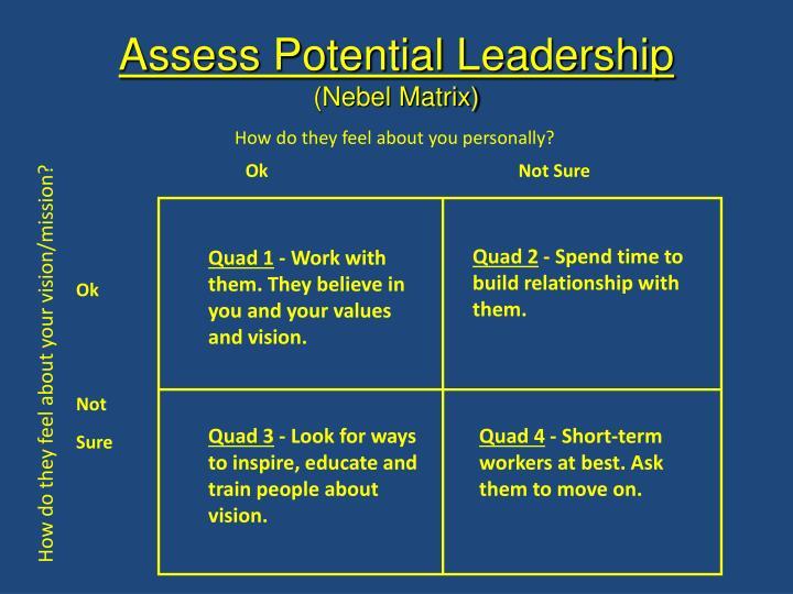 Assess Potential Leadership