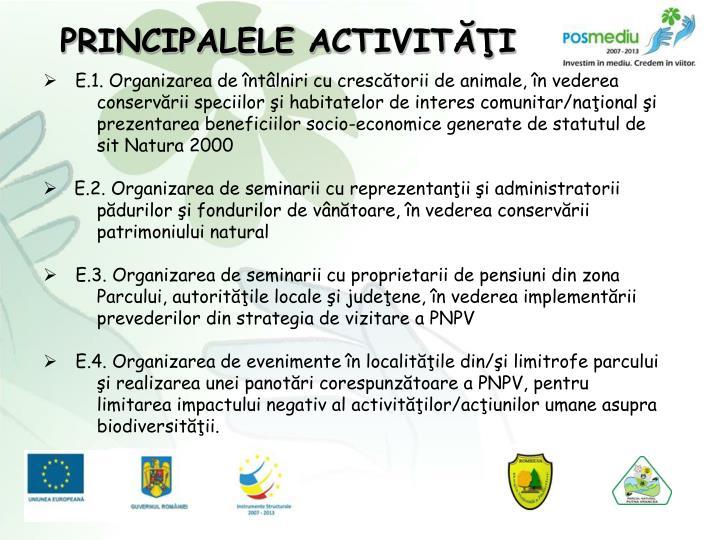 PRINCIPALELE ACTIVITĂŢI